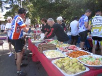 Foxy's Fall Century: Wooden Valley Volunteers