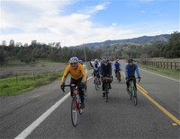 Putah Creek Peloton